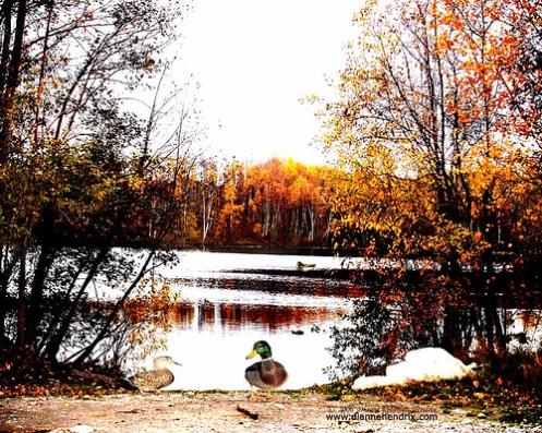 Lake Wasilla in the Fall